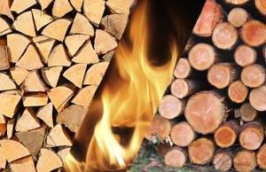 Pourquoi choisir un bon bois bûche pour le chauffage ?