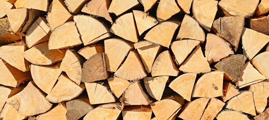 Comment bien choisir son bois de chauffage? Crépito® vous conseille